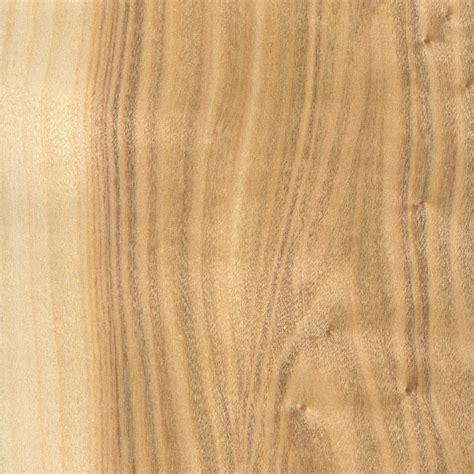 white poplar the wood database lumber identification