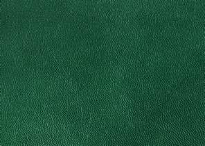 green leather texture background image free