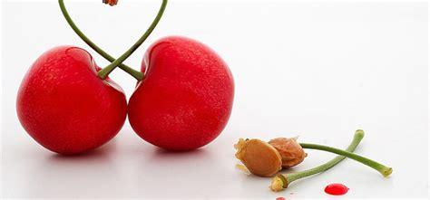 cuscini noccioli ciliegia come fare un cuscino ai noccioli di ciliegia fai da te