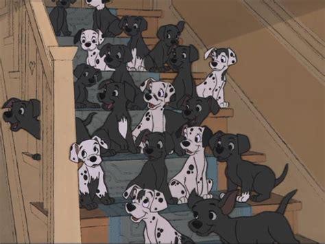 101 dalmatians puppies 101 dalmatians puppies image 9770496 fanpop