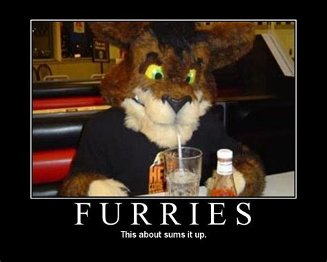 Gay Cat Meme - the blast furnace furries invade pittsburgh