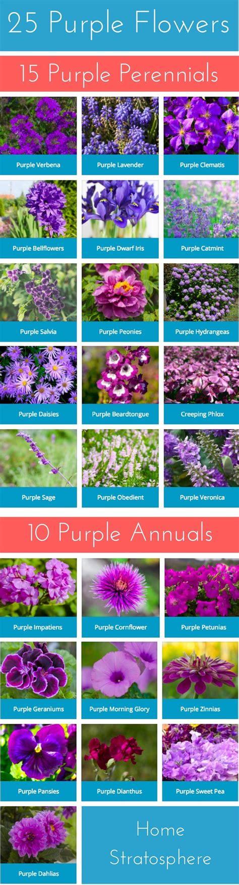 Cocolatte Pockit 789 Purple Blue best 25 garden pots ideas on paint garden pots painting pots and painted flower pots