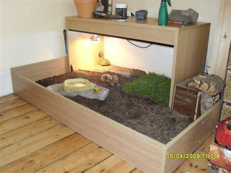russian tortoise table idea for my future russian tortoise
