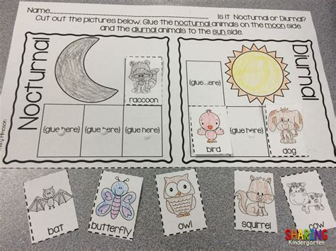 printable nocturnal animal book nocturnal animals sharing kindergarten