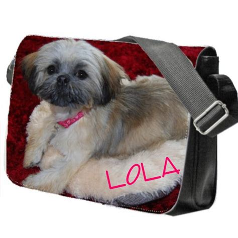 best shoo for a shih tzu shih tzu collage shih tzu puppy school college messenger bag