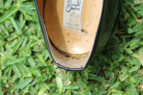 bed bugs shoes bed bugs in shoes 28 images bed bug eggs stick to