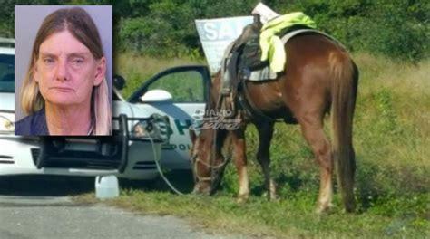 burro cojiendo pony cojida por caballo cojida por caballo gorda cojiendo con
