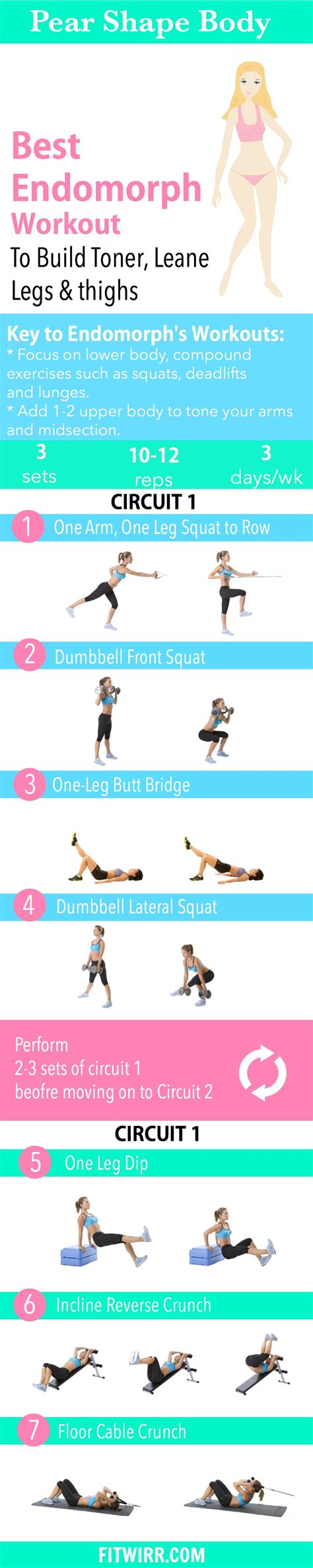 workout plan for endomorph eoua