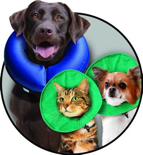 soft e collar for dogs kong ez soft e collar for cats and dogs small new ebay