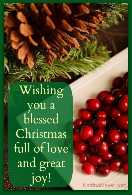 wishing   blessed christmas full  love  great joy