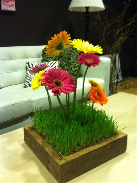 17 best images about wheat grass centerpieces on pinterest