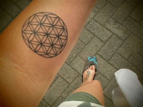 seed of life tattoo sacred geometry seed of hexagram tattoos
