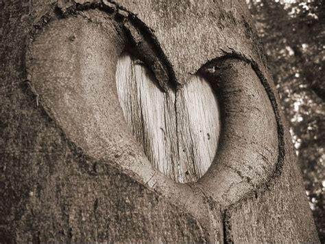 images of love nature love nature wallpapers salon des refus 233 s
