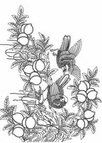 free printable coloring pages for adults advanced free coloring pages of tree