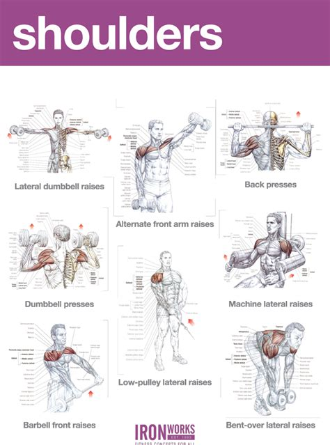 blogarticleabs and shoulders workout exles 41 iron