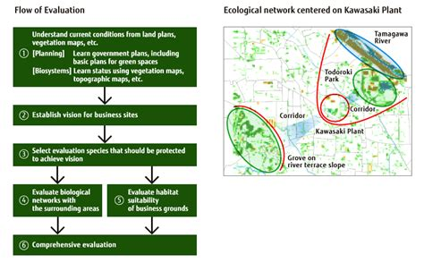 Essay Biodiversity Conservation Environment by Essay Biodiversity Conservation Environment