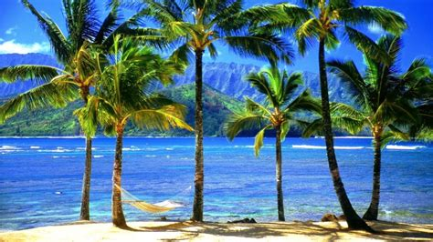Hawaiian island view wallpapers   Wallpaper view