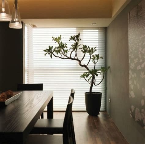 Plants In Dining Room by Architecture Tropical Plant Placed Next To Window In The