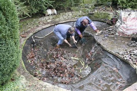 how to clean a backyard pond polar bear bedding uk wild horses home run bedding