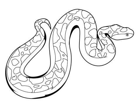 Coloring Page Snake by Snake Free Colouring Pages