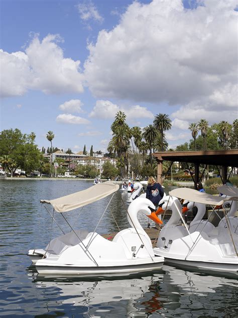 swan boats la echo park lake an oasis in la with swan boats canoes