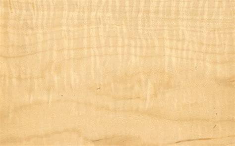 tiger maple roars  renewed popularity woodshop news