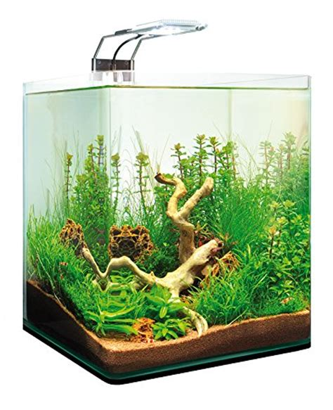 Aquarium Design by Dennerle Nanocube Completeplus Led 20l Nano Aquarium