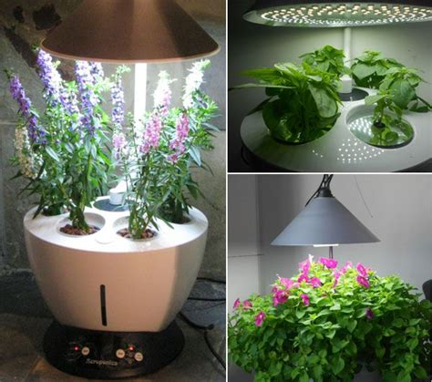 best indoor garden system melies s cooking
