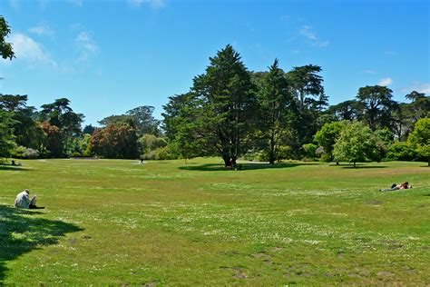 lawn free backyard file san francisco botanical garden great lawn 1 jpg wikipedia
