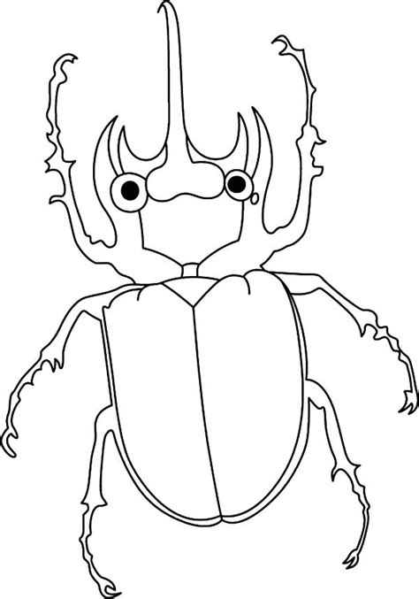 beetle coloring sheet coloring pages