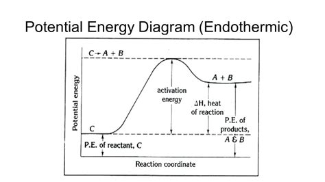 Endothermic Diagram