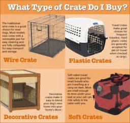 Crate Training how to crate train your dog crate training tips