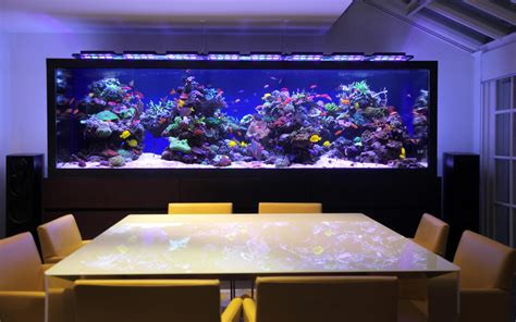 custom aquarium location in home aquarium architecture