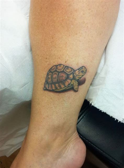 50 attractive turtle tattoos