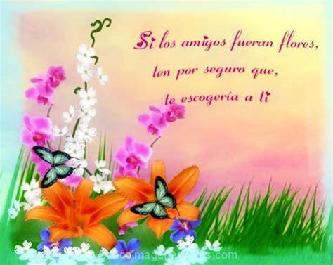 imagenes de flores bonitas para portada paisajes de flores con frases de amor banco de im 225 genes