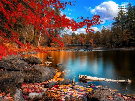 imagenes de paisajes lindos para bajar imagenes de paisajes para compartir cartas de feliz