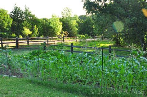 what to plant in april dirt ramblings 174