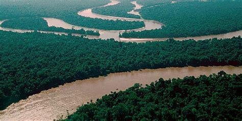 amazon travel travel guide to amazon river brazil xcitefun net