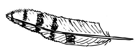 eagle feather coloring pages feather coloring page coloring pages