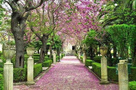 giardini siciliani andar per giardini in sicilia guida sicilia