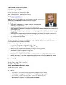 project manager senior planner cv