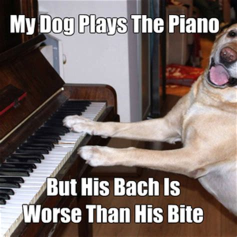 Piano Meme - july dom contest topic