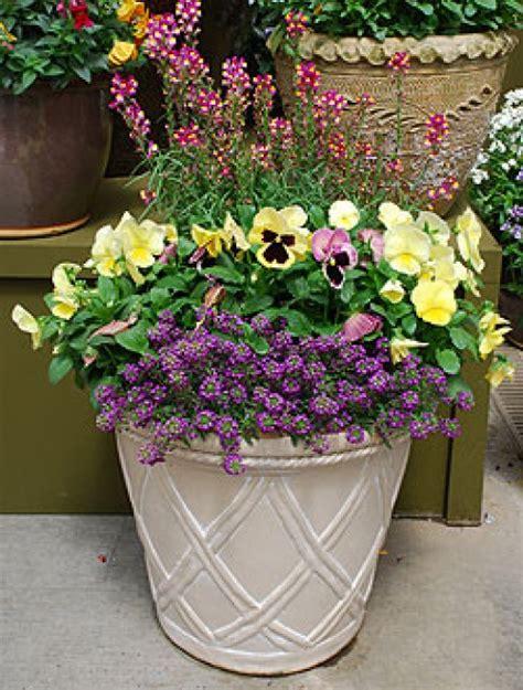 backyard container gardening ideas modern container garden ideas dengarden