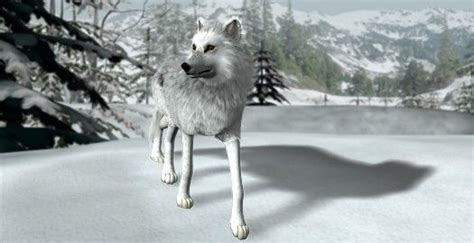 wii port nancy drew the white wolf of icicle creek