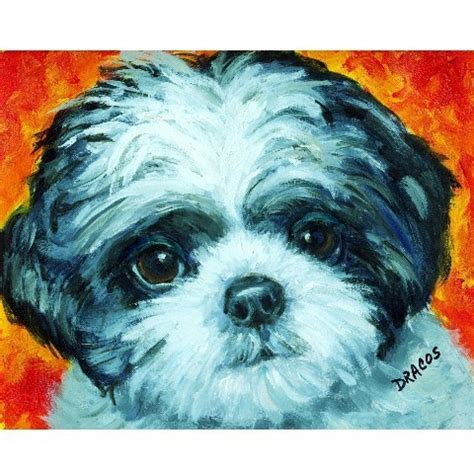shih tzu paintings shih tzu black and white pup print of original