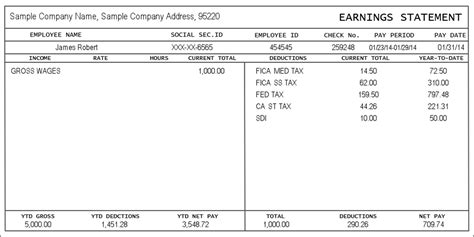 Blank Pay Stub Template Word free paystub template template idea