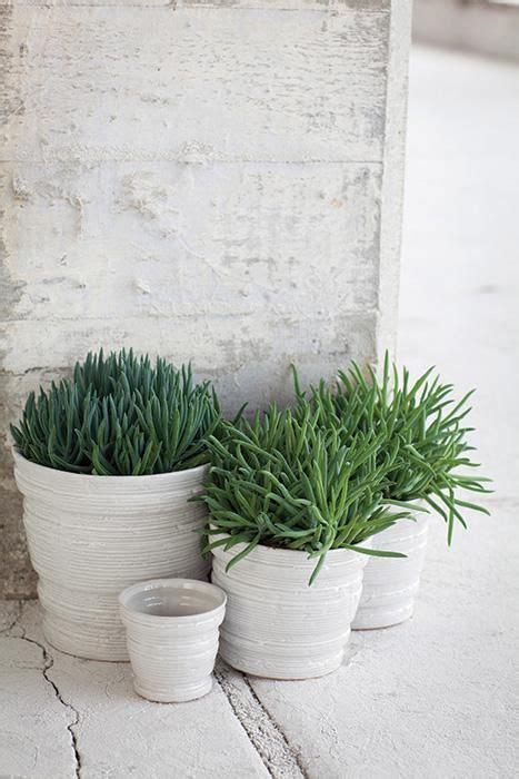 serax vasi serax maison d 234 tre vasi piante grasse decorazioni