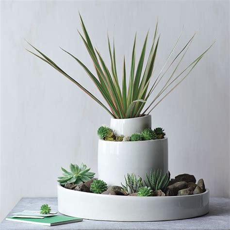modern planters indoor shane powers cut clay cylinders glass dome west elm