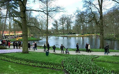 amsterdam flower garden in bloom the beautiful keukenhof flower gardens near