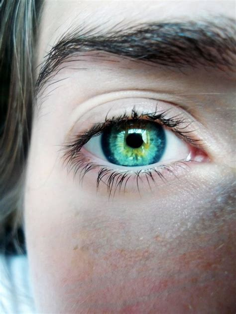 coolest eye colors 50 best heterochromia images on pretty